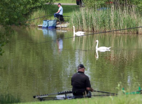Pleasure angling on the Match Lake