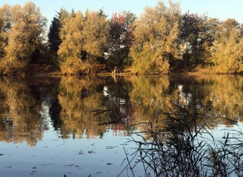 Autumn on West End Lake